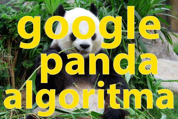 google panda algoritma