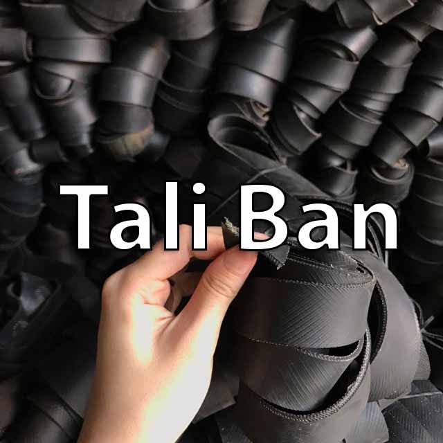 Teknologi taliban
